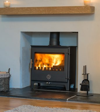 Woody Penguin Multi Fuel Stove
