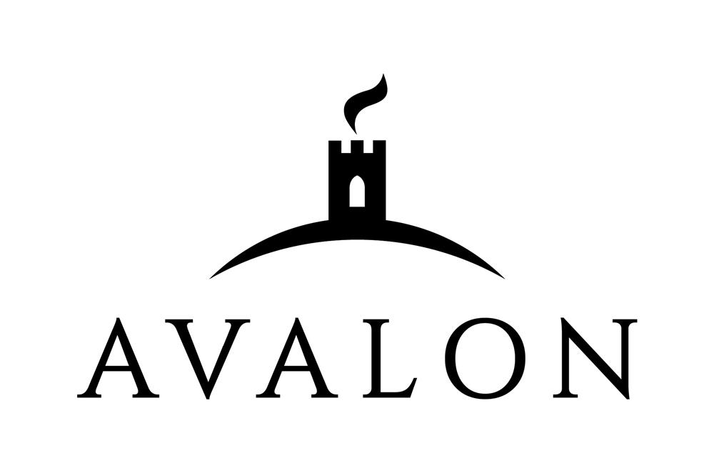 Avalon Wood Burning and Multi Fuel Stoves